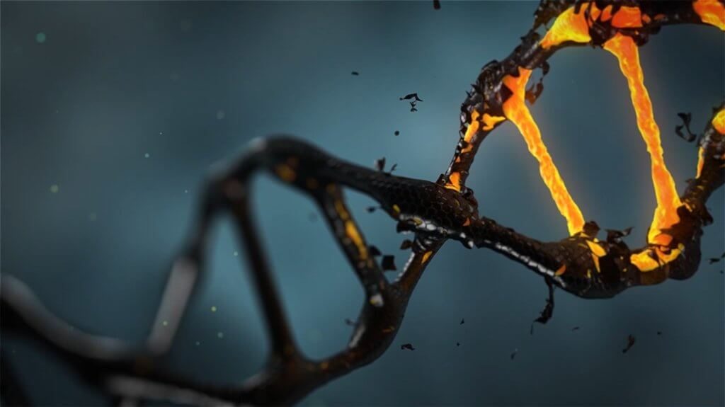Epigenetic DNA Dr Googbinder